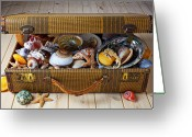 Shells Greeting Cards - Old suitcase full of sea shells Greeting Card by Garry Gay