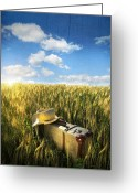Sunlight Greeting Cards - Old suitcase with straw hat in field Greeting Card by Sandra Cunningham