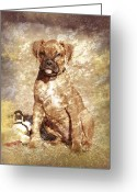 Brown Dogs Digital Art Greeting Cards - Old Time Boxer Portrait Greeting Card by Angie McKenzie