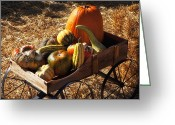 Bales Greeting Cards - Old wagon full of autumn fruit Greeting Card by Garry Gay
