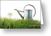Beginnings Greeting Cards - Old watering can in grass with white Greeting Card by Sandra Cunningham
