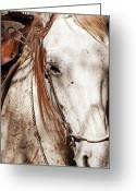Relaxing Greeting Cards - Old West Love Greeting Card by Leah Moore