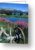 Landscape Greeting Cards Greeting Cards - Old Wheel and Brooks Lake Greeting Card by Kathy Yates