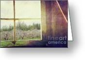 Indoors Home Greeting Cards - Old window looking out to apple orchard Greeting Card by Sandra Cunningham