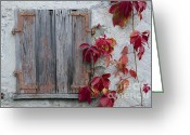 Red Leaves Greeting Cards - Old window with red leaves Greeting Card by Mats Silvan