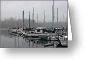 Percival Greeting Cards - Olympia ...At Percival Landing II Greeting Card by Terri Thompson