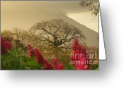 Rudi Prott Greeting Cards - Ometepe Island 2 Greeting Card by Rudi Prott