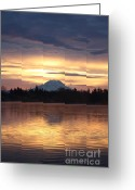 Tacoma Greeting Cards - On American Lake  Greeting Card by C E Dyer