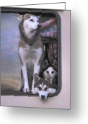 Intent Greeting Cards - On Guard Greeting Card by Patricia Stalter