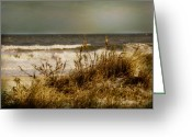 Sea Oats Digital Art Greeting Cards - On the Beach Greeting Card by Mary Timman