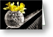 Selective Color Greeting Cards - On the Edge Greeting Card by Karen M Scovill