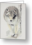 Wolves Drawings Greeting Cards - On The Garden Path Greeting Card by Joette Snyder