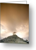 Mound Greeting Cards - On The Hill Greeting Card by Angel  Tarantella