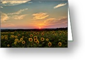 Scenic New England Greeting Cards - On the horizon Greeting Card by Bill  Wakeley