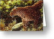 Leopard Greeting Cards - On The Prowl Greeting Card by Crista Forest