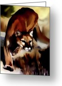 Cougar Greeting Cards - On the prowl Greeting Card by Vic Weiford