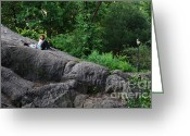 Sunbathing Trees Greeting Cards - On the Rocks in Central Park Greeting Card by Lee Dos Santos