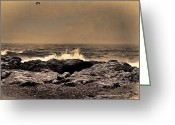 Photographic Art For Sale Greeting Cards - On the Rocks Greeting Card by Tom Prendergast