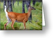 White Tail Deer Print Digital Art Greeting Cards - On the Run Greeting Card by Sheri McLeroy