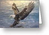 Catch Light Greeting Cards - On wings of eagles Greeting Card by Cecilia Putter