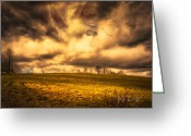 Lush Greeting Cards - Once Last Spring Greeting Card by Bob Orsillo