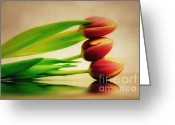 Flower Photography Greeting Cards - One above the other Greeting Card by Kristin Kreet