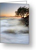 ; Maui Photo Greeting Cards - One against the Tides Greeting Card by Mike  Dawson