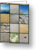 Beachy Greeting Cards - One Day at the Beach ll Greeting Card by Michelle Calkins