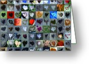 Grid Of Heart Photos Digital Art Greeting Cards - One Hundred and One Hearts Greeting Card by Boy Sees Hearts