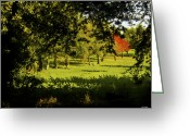 Johnny Trippick Greeting Cards - One Red Tree Greeting Card by Johnny Trippick