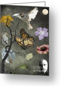 Humanity Greeting Cards - One small corner of creation Greeting Card by Jim Wright