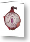Kitchen Photos Greeting Cards - Onion Greeting Card by Frank Tschakert