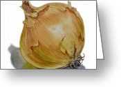 Irina Greeting Cards - Onion Greeting Card by Irina Sztukowski