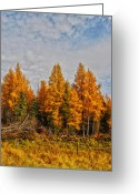 Horns Greeting Cards - Onoway Greeting Card by Jerry Cordeiro