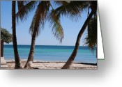 Turquois Greeting Cards - Open Beach View Greeting Card by Susanne Van Hulst