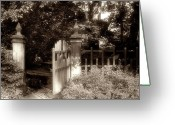 Fence Gate Greeting Cards - Open Invitation Greeting Card by Tom Mc Nemar