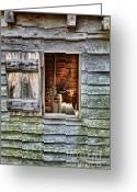 Cabin Window Greeting Cards - Open Window in Pioneer Home Greeting Card by Jill Battaglia