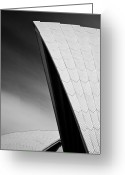 Abs Greeting Cards - Opera House Greeting Card by David Bowman