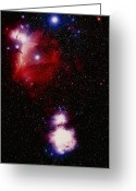 Horsehead Greeting Cards - Optical Image Of Horsehead And Great Orion Nebula Greeting Card by Celestial Image Co.