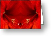 Flower Greeting Card Greeting Cards - Orange Amaryllis Hippeastrum Close-Up Double Greeting Card by James Bo Insogna