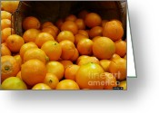Citrus Fruits Greeting Cards - Orange Basket Greeting Card by Methune Hively