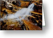 National Forest Greeting Cards - Orange Falls Greeting Card by Chad Dutson
