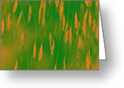 Digital Image Greeting Cards - Orange Grass Spikes Greeting Card by Heiko Koehrer-Wagner