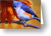 Titmouse Greeting Cards - Orange Medley Greeting Card by Jai Johnson