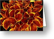 Decor Floral Picture Cards Greeting Cards - Orange Splurge Greeting Card by Debra  Barrington