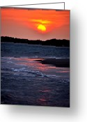 Beaches Greeting Cards - Orangecicle on the Ocean Greeting Card by Emily Stauring