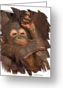 Ape. Great Ape Greeting Cards - Orangutan Baby Greeting Card by Larry Linton