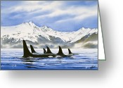 Whale Greeting Cards - Orca Greeting Card by James Williamson