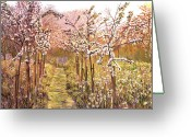 Orchards Greeting Cards - Orchard Morning Greeting Card by David Lloyd Glover