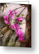 Luscious Greeting Cards - Orchid - Tropical Passion Greeting Card by Mike Savad